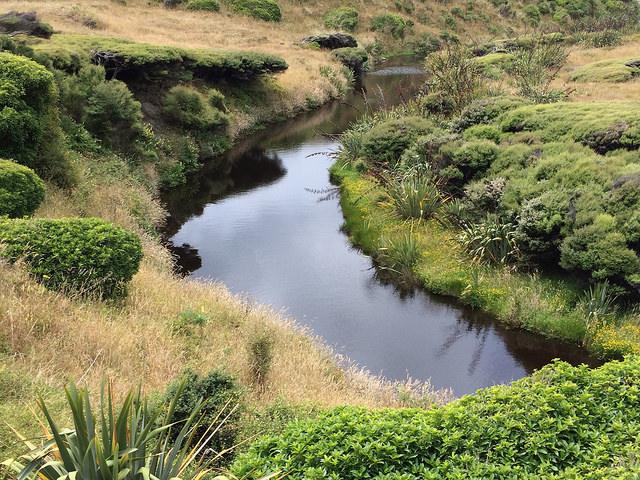 river-wharariki