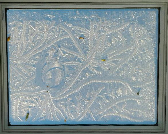 Frost on a skylight, Prue Kennard