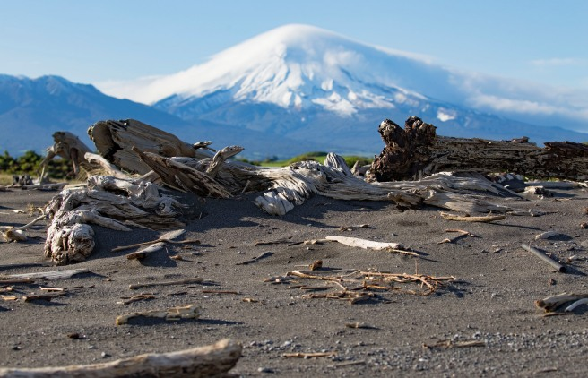 Cloud-capped Taranaki, driftwood in front. Photo Dave Young CC BY 2.0